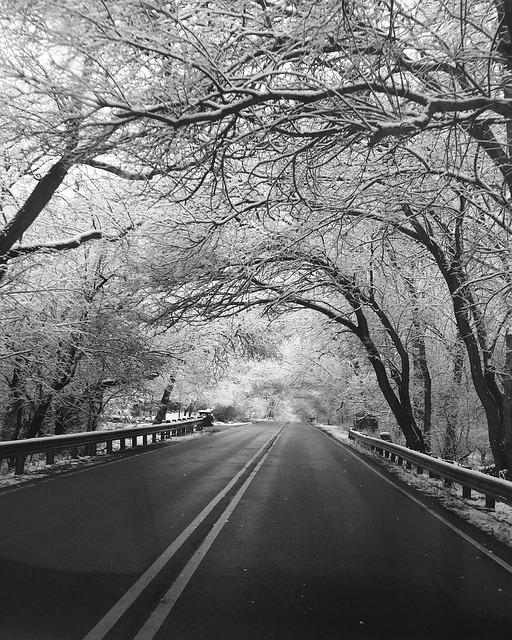 можно наблюдать черно белые картинки дороги подготовленные