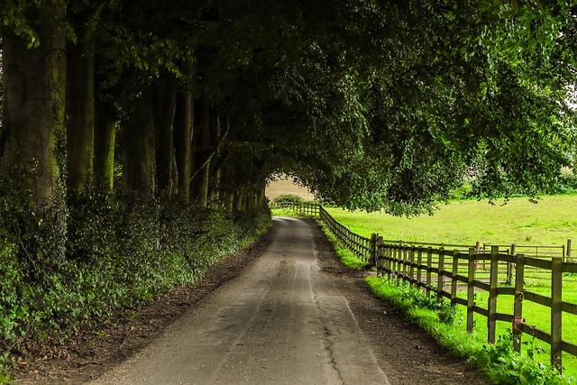 Path Farm Nature 183 Free Photo On Pixabay