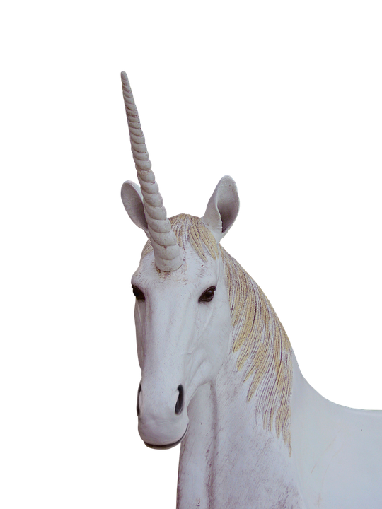 png unicorn animal magic free photo on pixabay