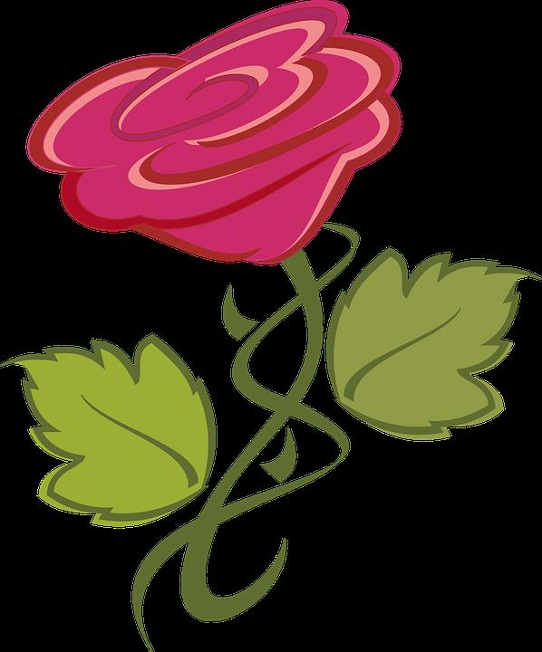 fleur rose nature image gratuite sur pixabay rh pixabay com clipart fleurs roses gratuit