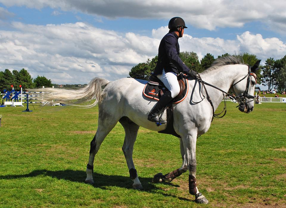 french horse racing season