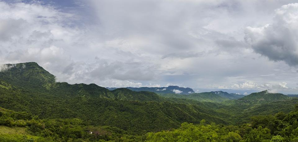 Forest, ป่า, เพชรบูรณ์, Thailand, Tree, Green, Mountain