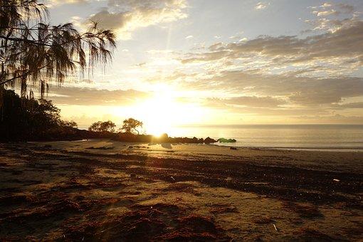 Nature, Australia, Port Douglas 15 Stunning Beaches around Australia to Explore in 202