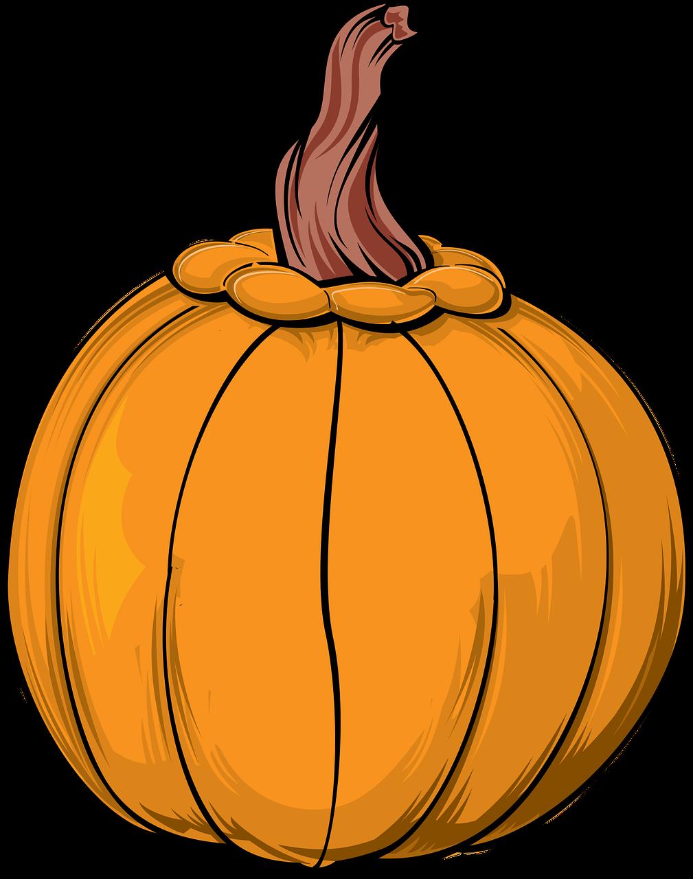 # Libbys Pumpkin Chocolate Chip Cookies - Chocolate Free pumpkin pictures clip art