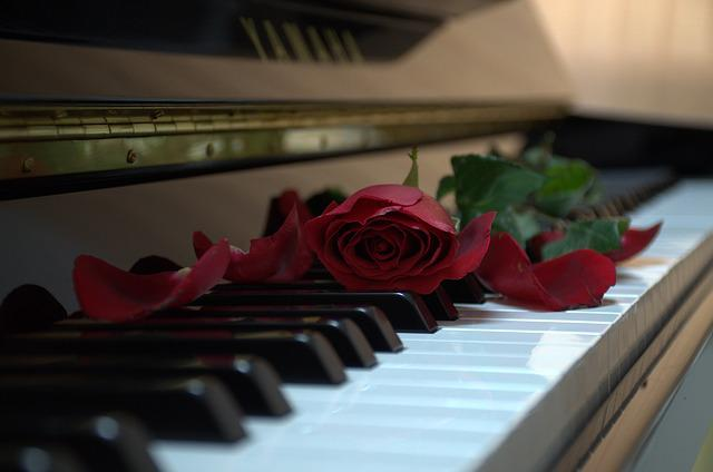 piano rose music 183 free photo on pixabay