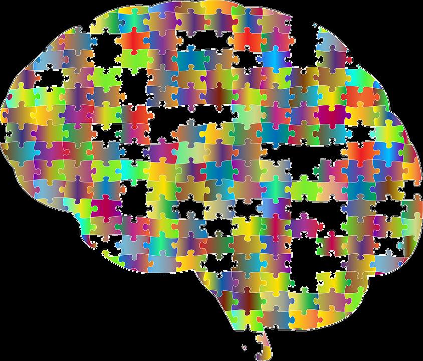 Gehirn, Schädel, Kopf, Psychologie, Denken, Gedanken