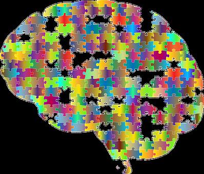 脳, 頭蓋, 頭, 心理学, 頭蓋骨, 思う, 思想, 心, ジグソー パズル
