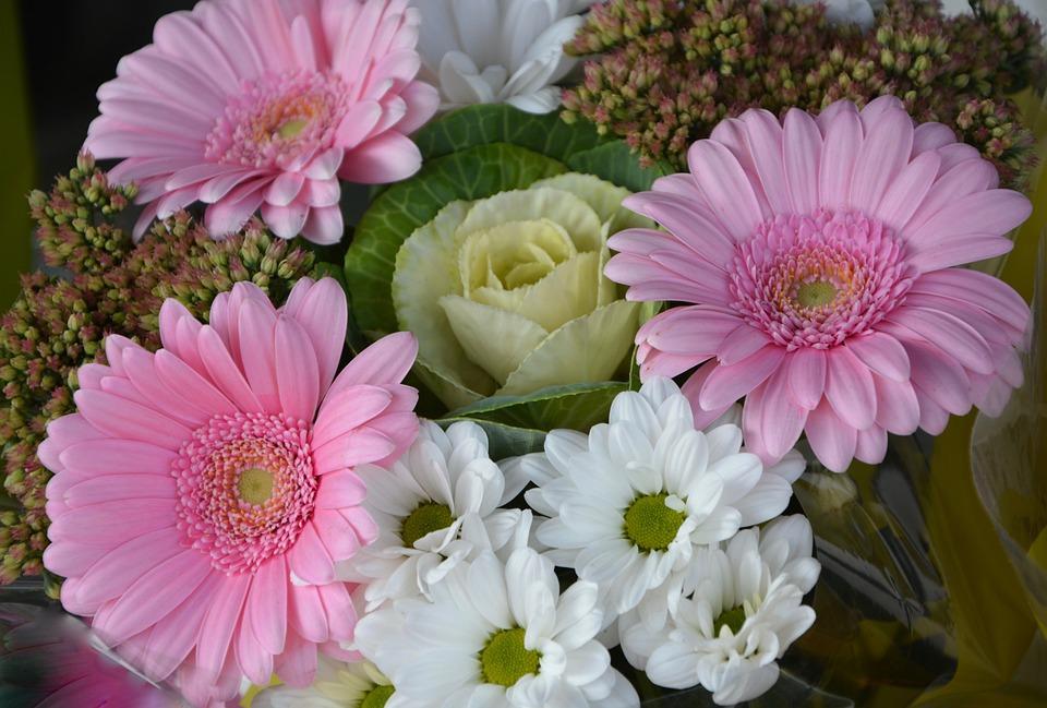 Blume Blumen Blumenarrangement · Kostenloses Foto auf Pixabay
