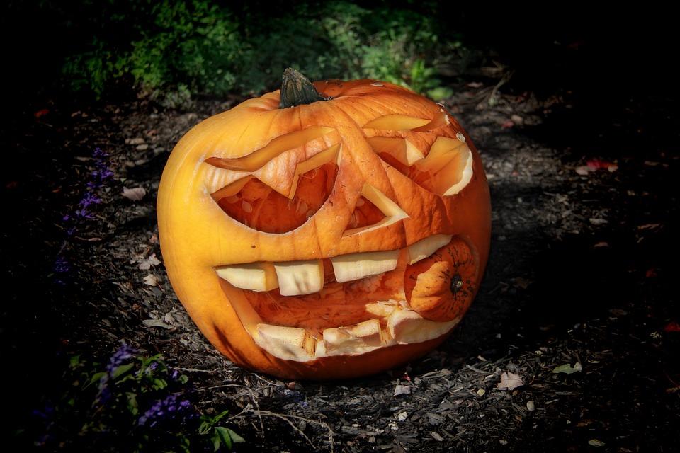 Kürbis, Haloween, Oktober, Herbst, Unheimlich, Horror