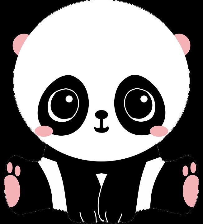 Panda Bear Cute Kawaii Black White Bebe Baby