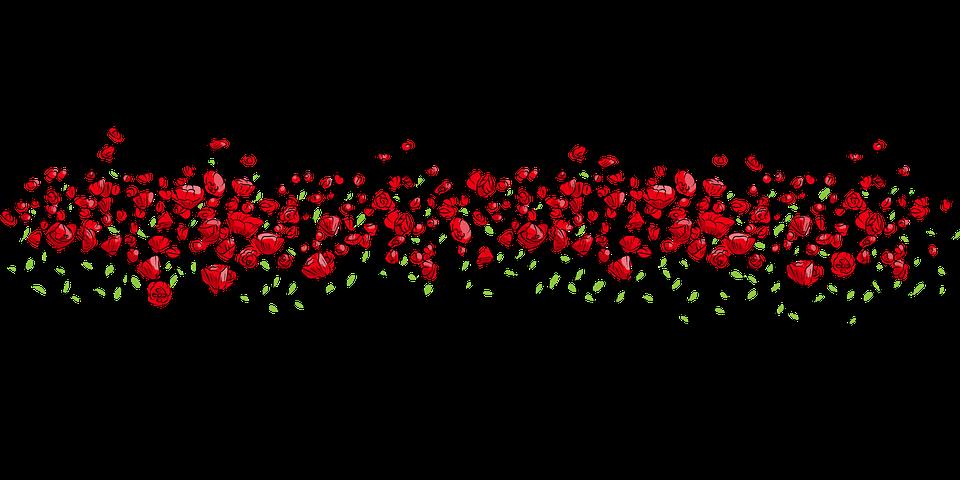 Flowers, Red, Nature, Vector, Horizontal, Flowering
