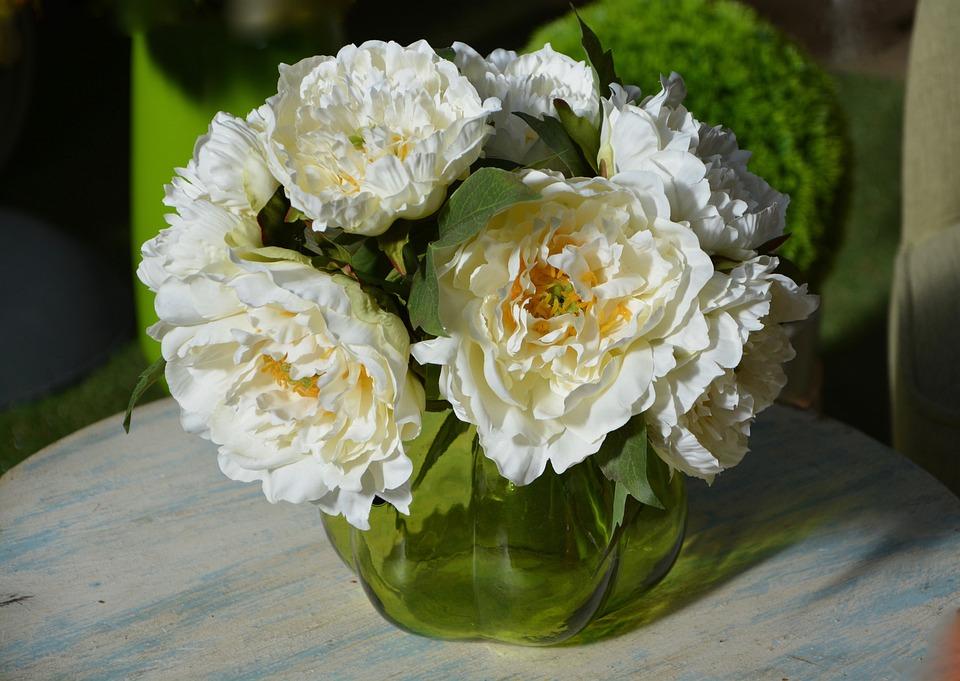 Fiori Bianchi In Vaso.Vaso Di Fiori Bianchi Foto Gratis Su Pixabay