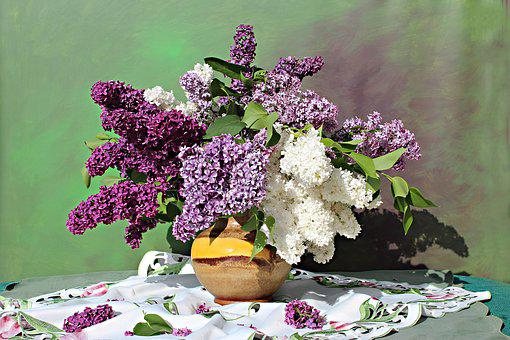Lilac Bouquet, Lilac Flower, Still Life