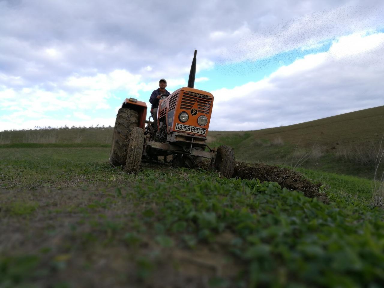 черепаха на тракторе фото стоять неподвижно одном