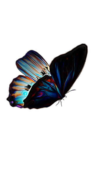 Butterfly Insect Summer 183 Free Image On Pixabay