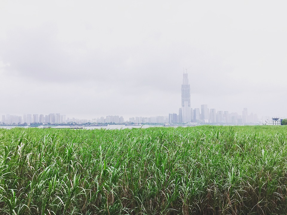 Wuhan, Riverside, The Yangtze River