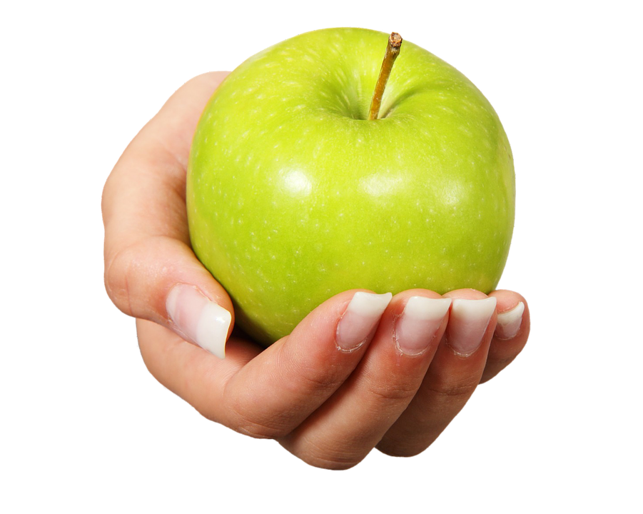 Free photo apple fruit healthy hand offer free image on pixabay 2766693 - Fruit de la ronce commune ...