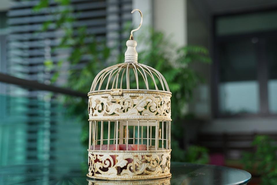 Bird Cage Vintage Decorative - Free photo on Pixabay
