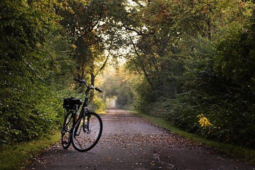 Bici, Sentiero, Bicicletta, Sport, Corsa