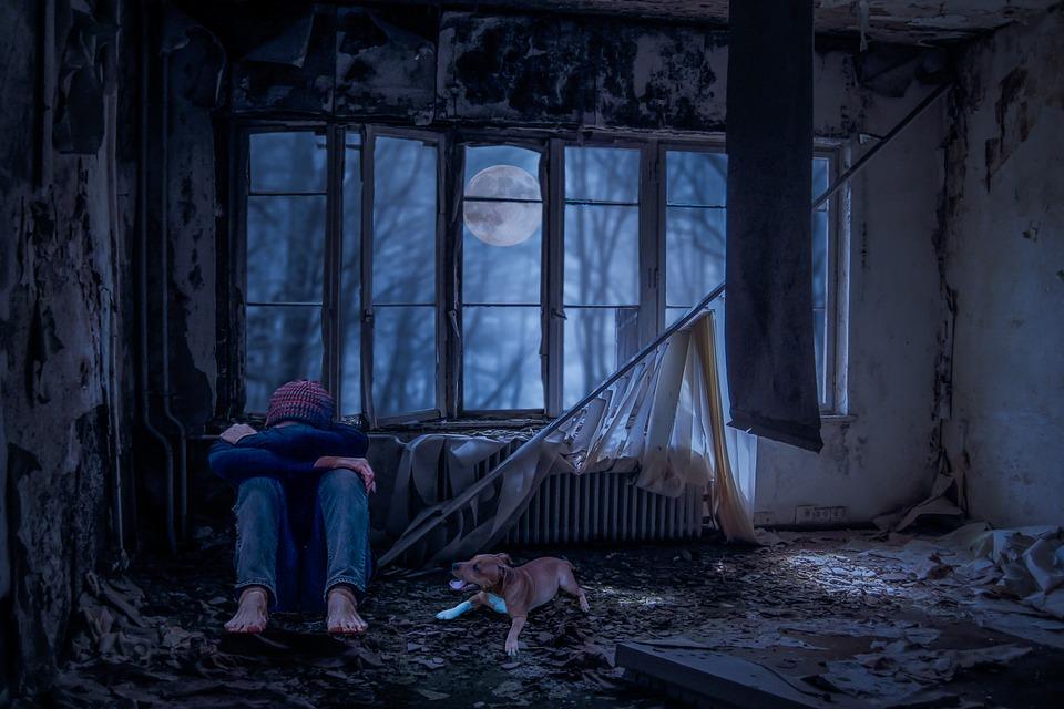Orang Orang Muda, Sendirian, Sedih, Anjing, Kamar