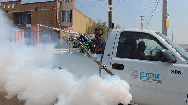 Fumigation, Street, Pesticide, Insect