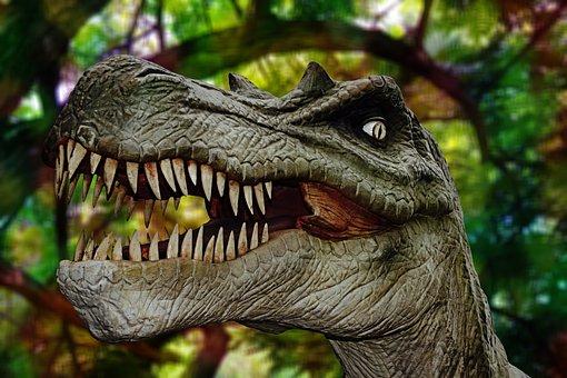 Dino Bilder Kostenlos