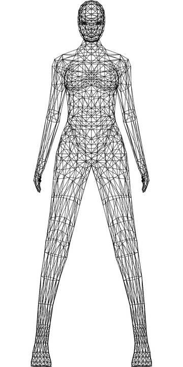 Mujer Wireframe Bajo Poli · Gráficos vectoriales gratis en Pixabay