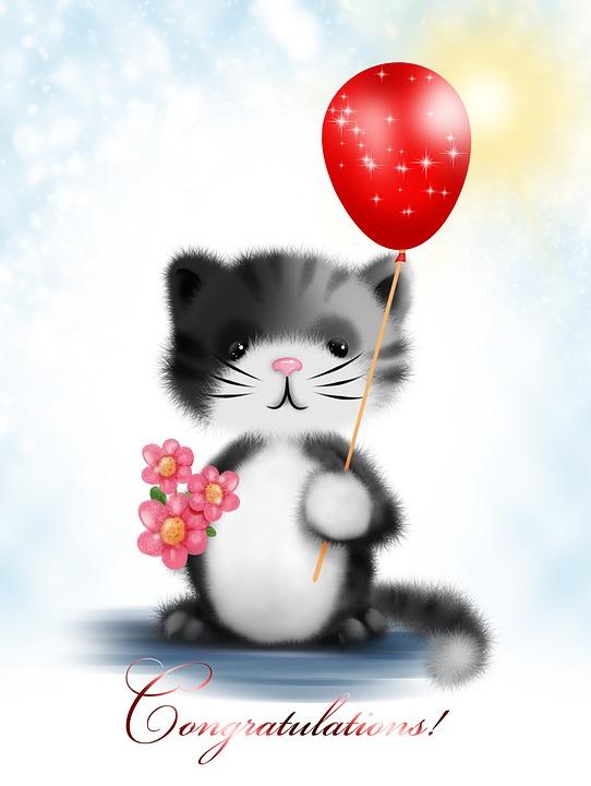 Greeting Card Kitten Flower · Free image on Pixabay