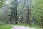 rain, weather, badly
