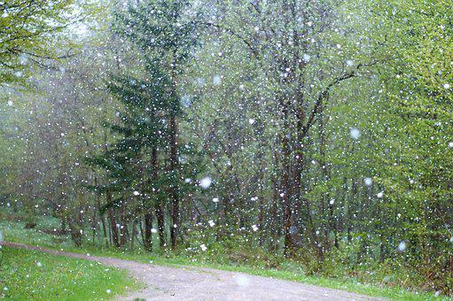 Snow Rain Images Pixabay Download Free Pictures