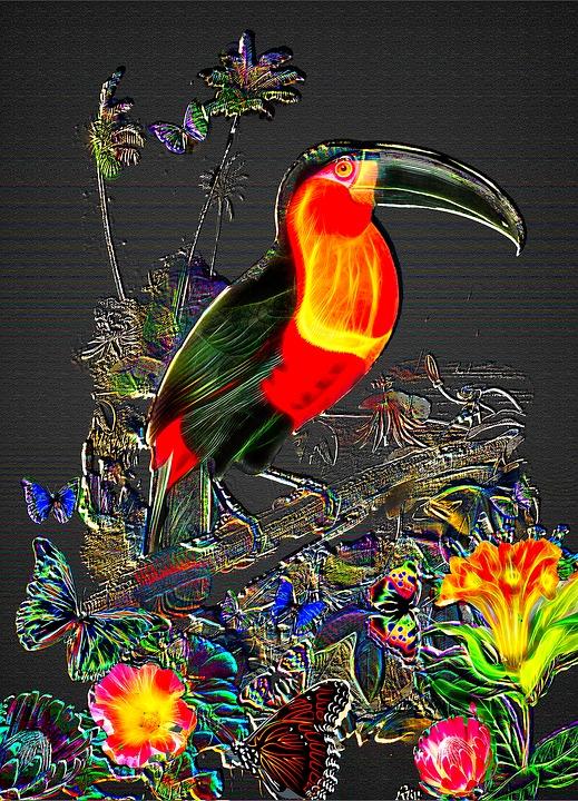 Zadarmo ilustrcia fantasy toucan dungle pozadia obrzok fantasy toucan dungle pozadia toucan wall art voltagebd Images