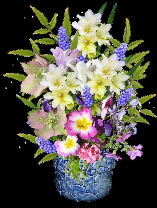 Spring Flowers Pottery Free Photo On Pixabay