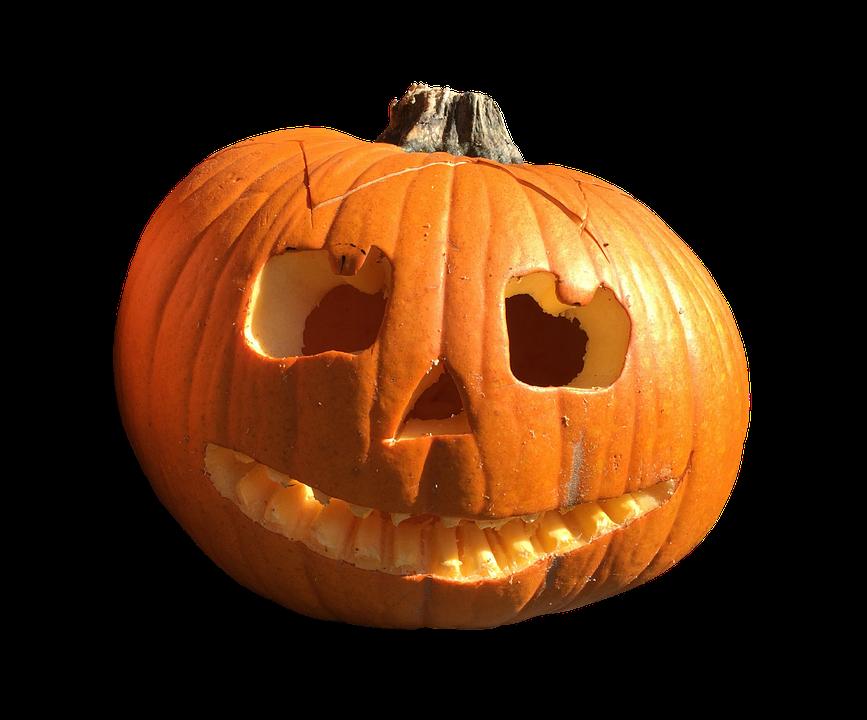 Pumpkin Fruit Orange 183 Free Photo On Pixabay