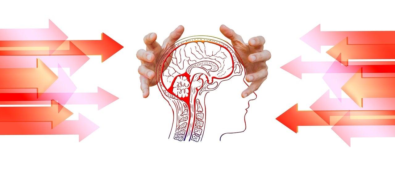 いじめ, ストレス, 頭, 脳, 思う, 羞恥心, 矢印, 攻撃, 恥じる, 非表示にします, 非表示, 絶望