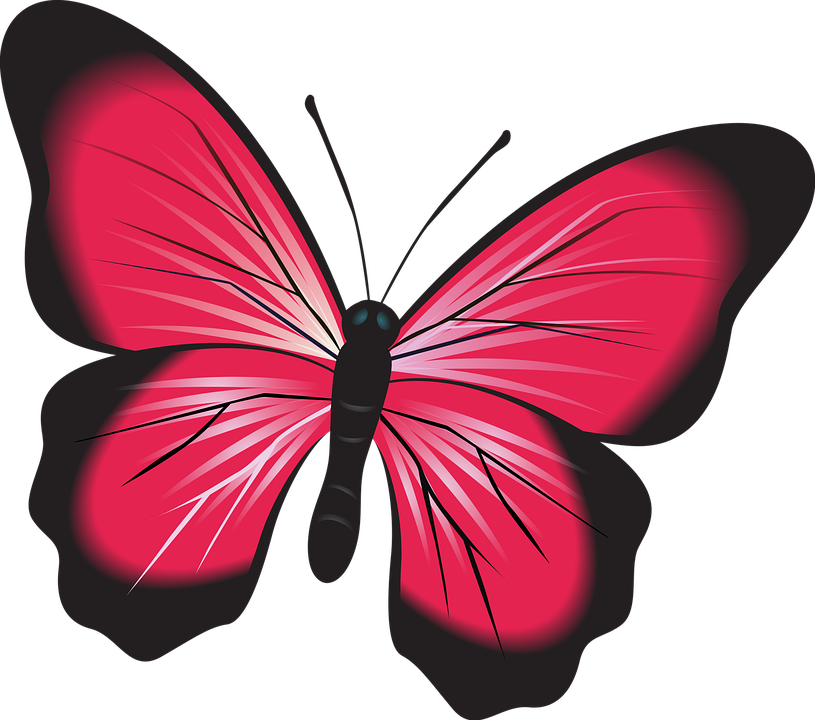 butterfly pink clip art free image on pixabay rh pixabay com clipart free girl clipart free microsoft