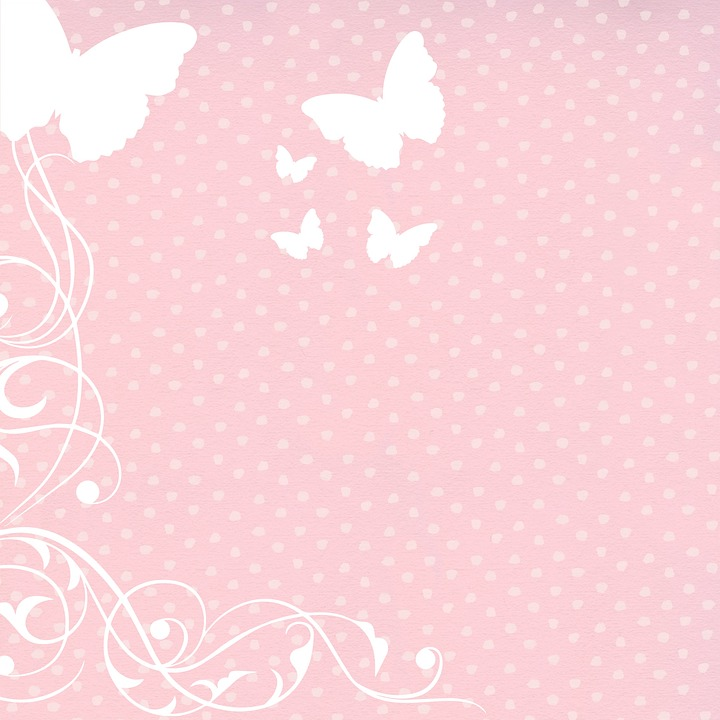 background butterfly pink 183 free image on pixabay