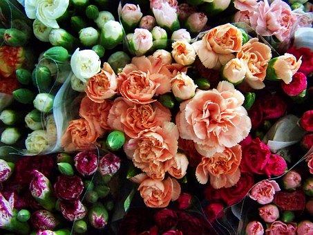 カラフルな花ブーケ, 切り花, マルチカラカーネーション
