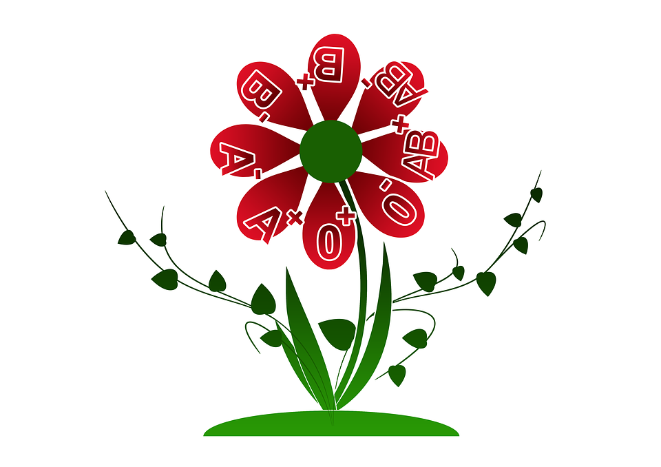 В Толочинской ЦРБ 27 июля будет проводиться День донора