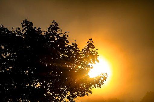 Sun, Raggio Di Sole, Estetica, Sunrise