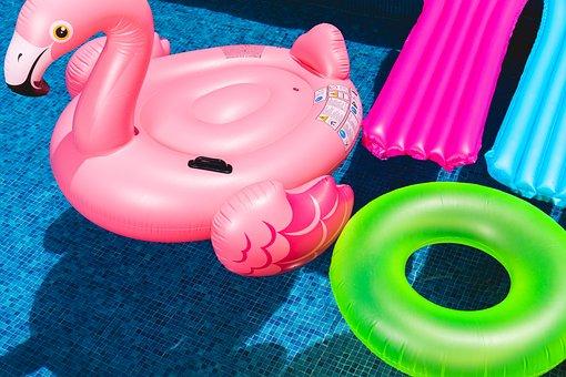 Water, Animal, Fun, Equipment, Flamenco