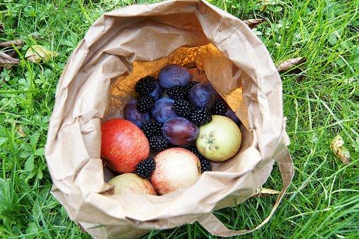 Fruit, Harvest, Apple, Plum, Blackberry