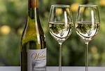 wine, wineglass, leisure