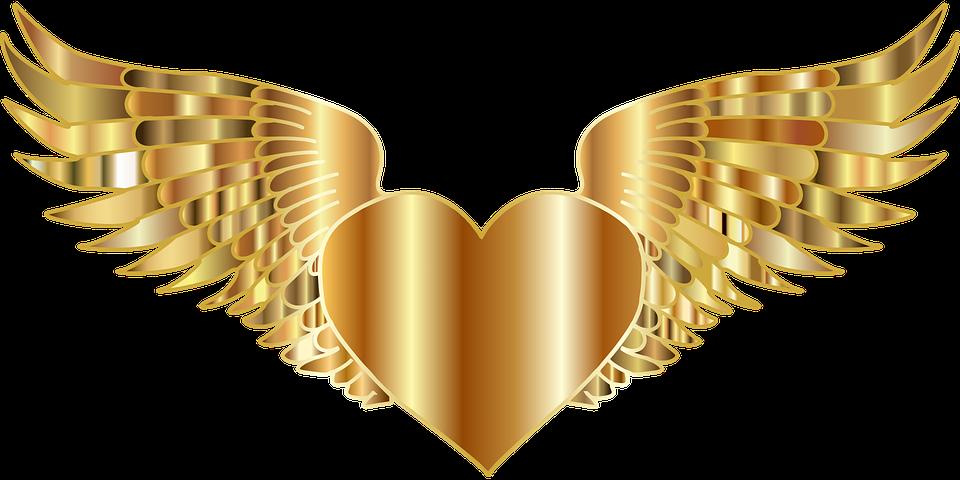 Corazón Alas Que Vuelan Gráficos Vectoriales Gratis En Pixabay