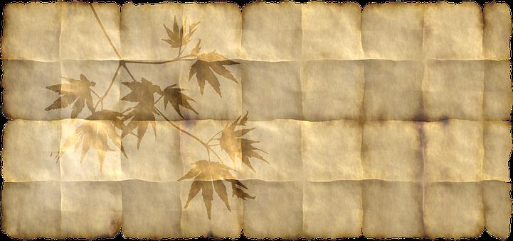 Paper, Parchment, Maple, Plant