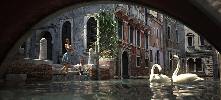 Venice, Swans, Reflections, Channel
