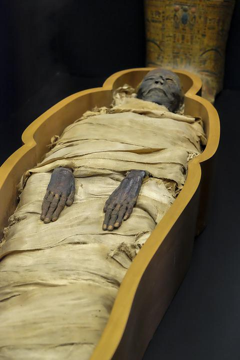 mummy museum egypt vatican  u00b7 free photo on pixabay
