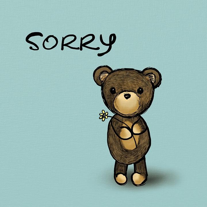 Sorry Bear Teddy 183 Free Image On Pixabay