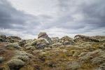moss, rock, iceland