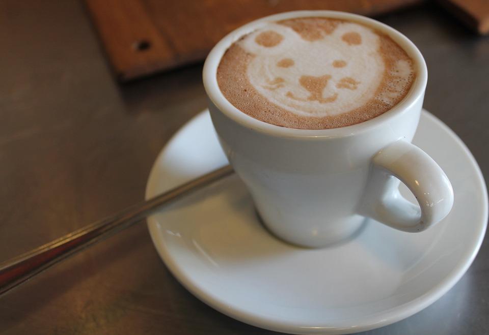 Kaffee Bär Gesicht White Cup · Kostenloses Foto auf Pixabay