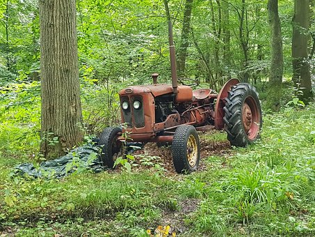 Tractors, Forest, Nature, Denmark